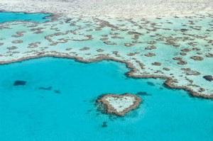 Heart Reef, Great Barrier Reef of the Whitsundays